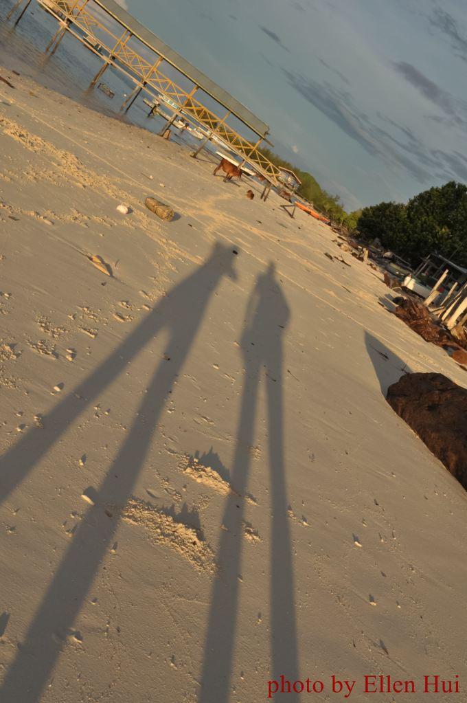 lady-long-legs.......