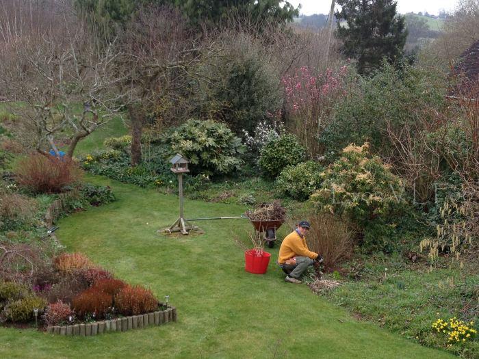ha was all over the garden