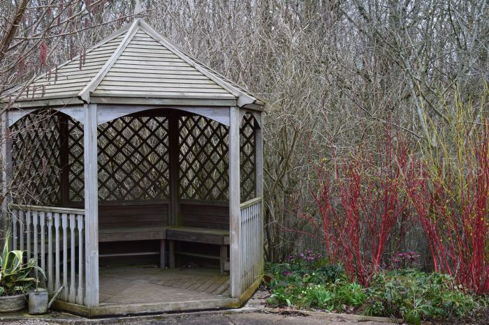 victor's garden