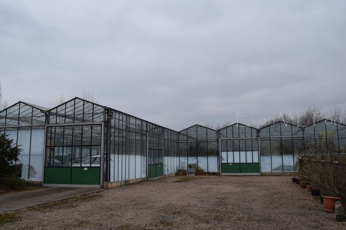 external of the green house