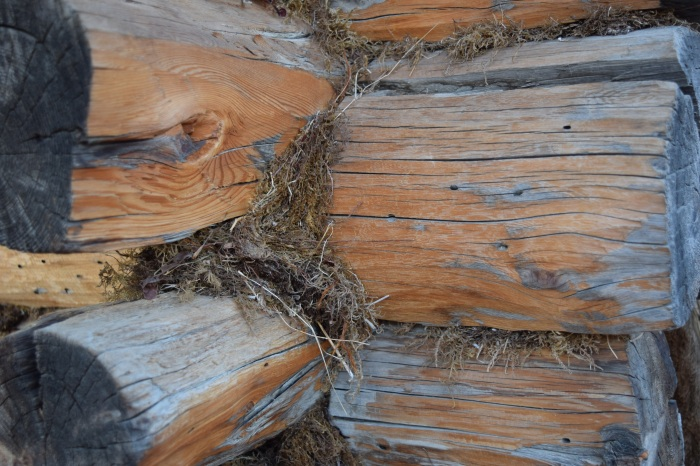 the cabins are built with logs and have no nails but are held together with mud and moss
