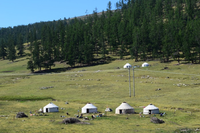 nomads settling down comfortably on grassland