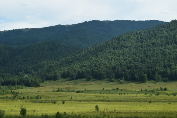 beautiful green pasture and mountains, what a difference from the barren Gobi Desert