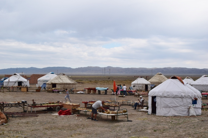 people set up yurt houses along the way and sell stones they picked up from Gobi Desert... just look at the landscape!