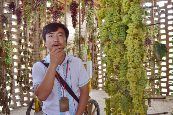 guide explaining how raisins are made - simply hung them on the frame to air dry in the drying house