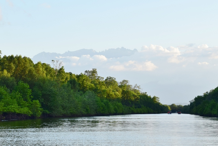 mangrove boat ride on Kawa Kawa River with Mt. Kinabalu in the foreground to search for proboscis monkeys