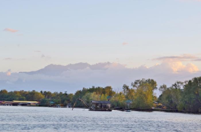 mongrove boat ride (6)
