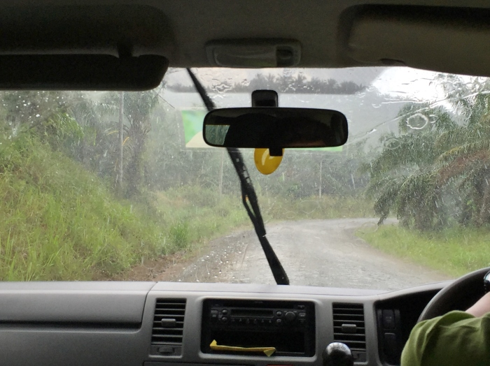 tabin wildlife reserve (1a)
