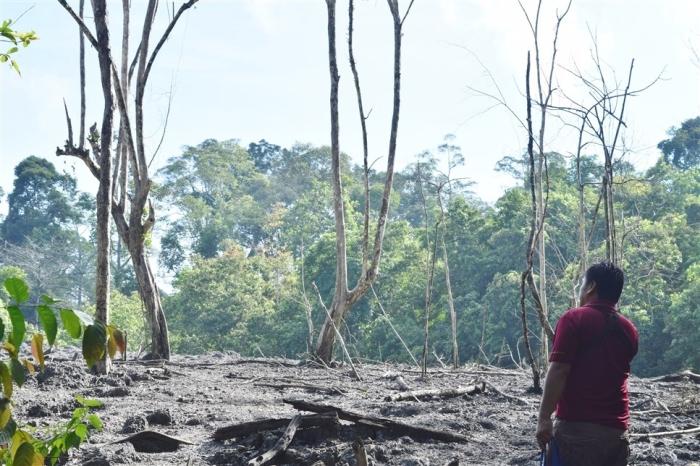 tabin wildlife reserve (22)