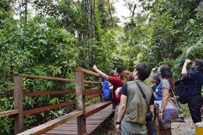 tabin wildlife reserve (25)