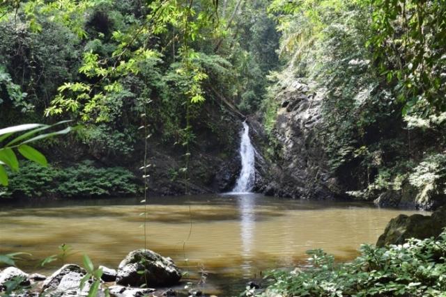 tabin wildlife reserve (27)
