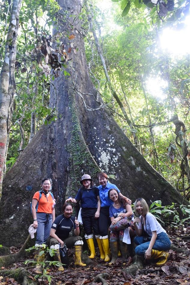 tabin wildlife reserve (46)