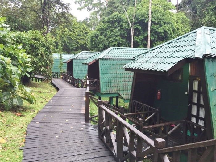 tabin wildlife reserve (7)