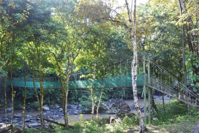 tabin wildlife reserve (8)
