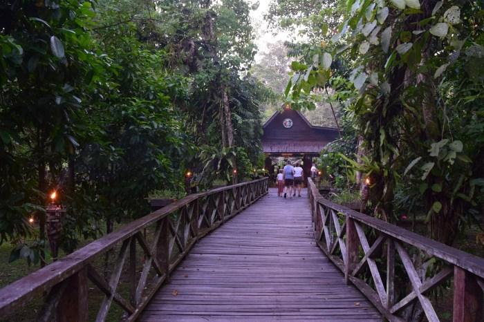 sukau rainforest resort (4)