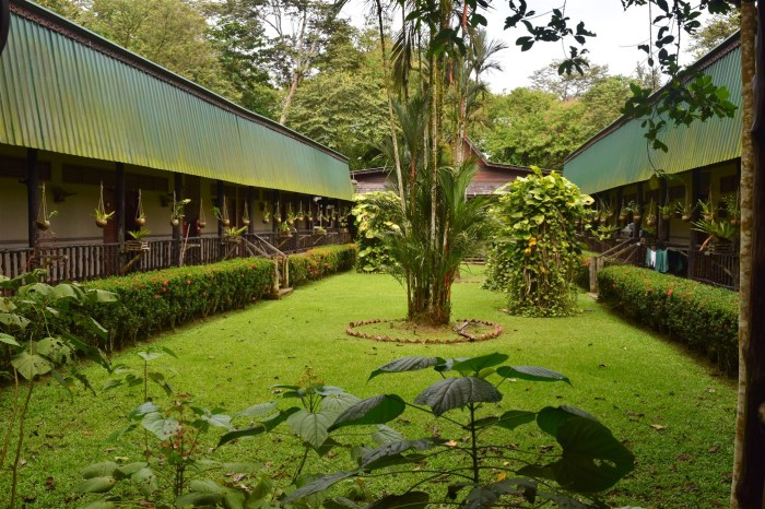 sukau rainforest resort (6)