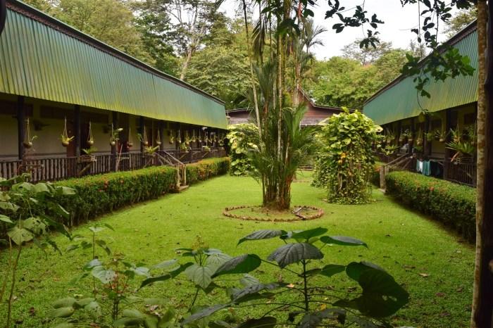 sukau rainforest resort (6)