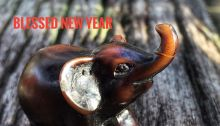 elephantgraphy, year-end reflection, friendship, love