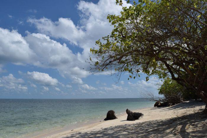 trip to selingan island sandakan (13)