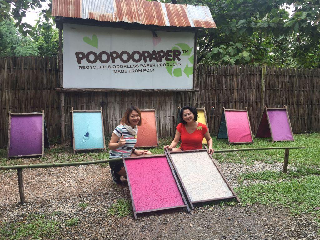 chiang mai elephant poopoopaper park